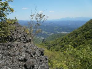 Uramyougi_20120519_244