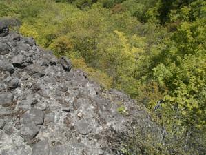Uramyougi_20120519_250