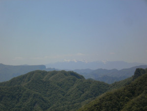 Uramyougi_20120519_408