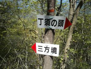 Uramyougi_20120519_420