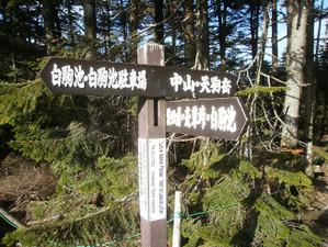 Tengudake_kurumayama_201206089_141