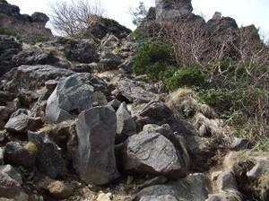 Tengudake2_20120608_080