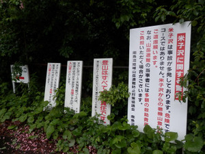 Makihatayama_20120623_046
