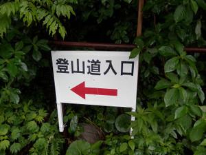 Makihatayama_20120623_047