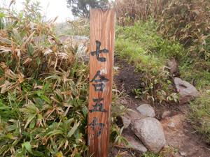 Makihatayama_20120623_140