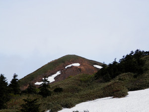Makihatayama_20120623_235