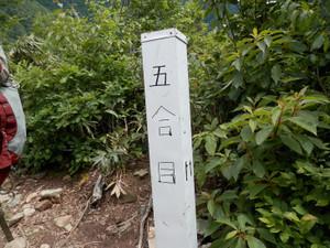 Makihatayama_20120623_595