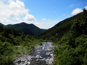 Makihatayama_20120623_609