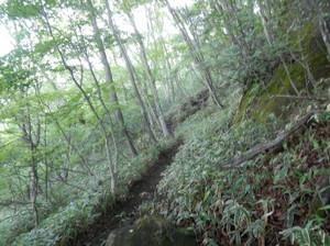 Akagiyama_20120630_049