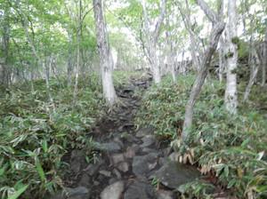 Akagiyama_20120630_077