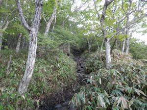 Akagiyama_20120630_105