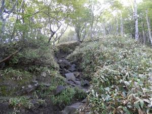 Akagiyama_20120630_108