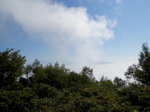 Akagiyama_20120630_187