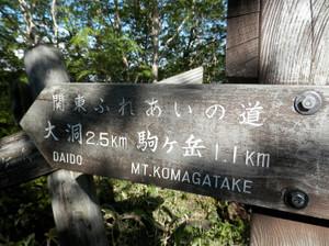 Akagiyama_20120630_206