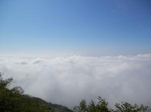 Akagiyama_20120630_276