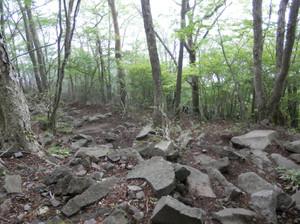 Akagiyama_20120630_308