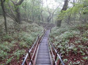 Akagiyama_20120630_309