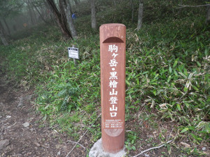 Akagiyama_20120630_321
