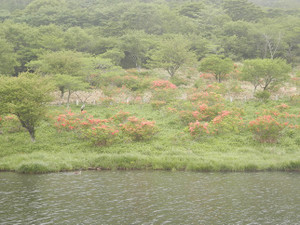 Akagiyama_20120630_372