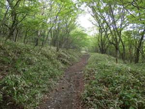 Akagiyama_20120630_433