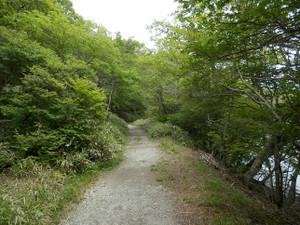 Akagiyama_20120630_504