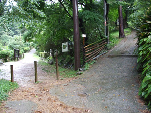 Azumayama_20120708_013