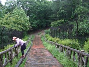 Azumayama_20120708_028_2