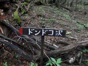 Houousanzan_20120715_058