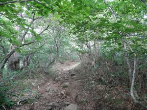 Tanigawadake_20120804_424