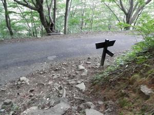 Tanigawadake_20120804_435