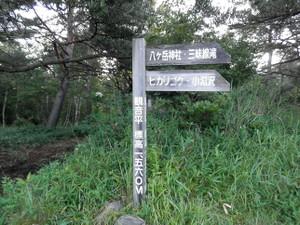 Amigasagongen_20120812_037