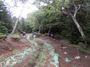 Nantaisan_20120825_316