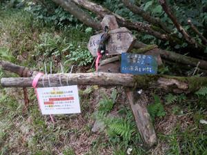 Tanigawarenpo_batei_20120901_489