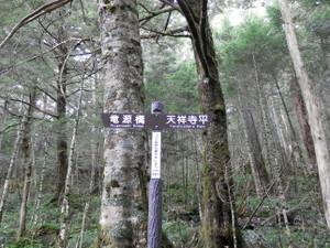 Tateshinayama_20120908_365