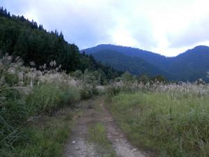 Shigekuramunho_20120915_032