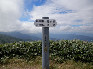 Shigekuramunho_20120915_396