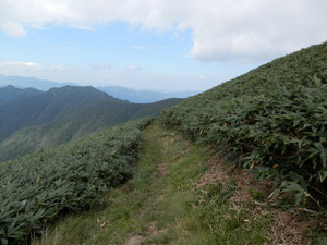 Shigekuramunho_20120915_486