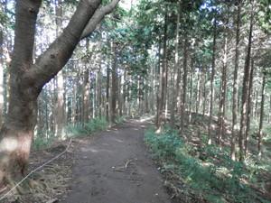 Takao_jinba_20120930_263