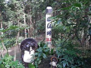 Takao_jinba_20120930_277