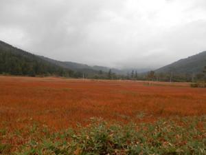 Shibutsusan_20121006_082