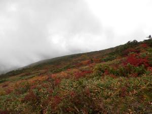 Shibutsusan_20121006_163