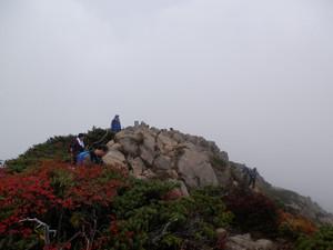 Shibutsusan_20121006_260