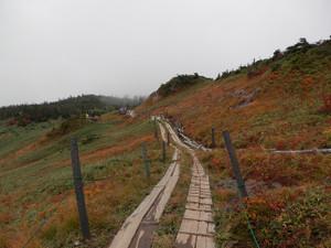 Shibutsusan_20121006_291