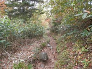 Shibutsusan_20121006_328