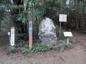 Hiwadakaoburi_20121008_012