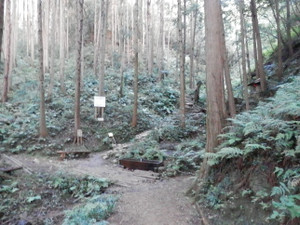 Hiwadakaoburi_20121008_014
