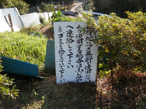 Hiwadakaoburi_20121008_084