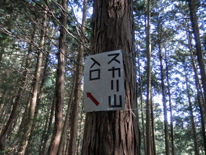 Hiwadakaoburi_20121008_111