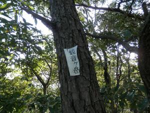 Hiwadakaoburi_20121008_113