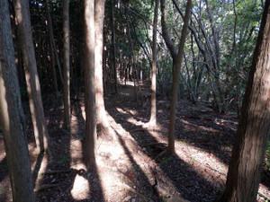 Hiwadakaoburi_20121008_161